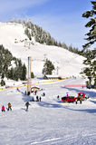 Grouse Mountain Skiing Area Stock Photography
