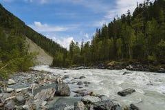 Grov bergflod i dalen bland steniga kuster och lärkträd på en bakgrund av berg under den blåa himlen och Arkivfoton