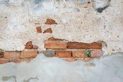 Grov betongvägg för skada med bakgrund för tegelstenvägg Royaltyfri Bild