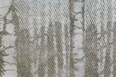 Grov betongväggbakgrund Royaltyfria Bilder