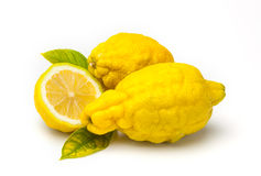 Grov citron (den frodiga citrusa jambhirien ), arkivfoton