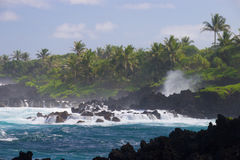 Grov kustlinje på den Waianapanapa delstatsparken Royaltyfri Bild