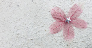Grov mulberypapperstextur Royaltyfri Fotografi