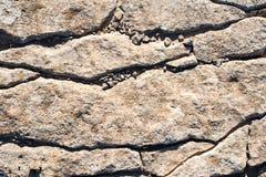 Grov naturlig stenvägg Royaltyfri Bild