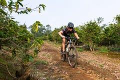 Grov ridning i Costa Rica Arkivfoton