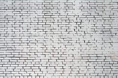 Grov tegelstenvägg för bakgrund som målas med vit målarfärg Fotografering för Bildbyråer