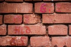 Grov tegelstenvägg Royaltyfri Bild