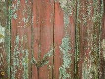 Grov wood struktur Arkivbild
