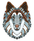 Grov zentangle för colliehundhuvudet stiliserade, vektorn, illustration, Royaltyfria Bilder