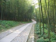grove bambusowego wysoki jpg rezolucji Zdjęcia Stock