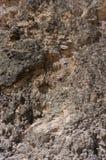 Grovkornig jord som ses från slut upp royaltyfri bild
