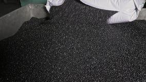Grovkornig smula för plast-svartgrå färger Tillverkning av den plast- fabriken för vattenrör Process av plast- rör för danande på Arkivfoto