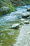 Grovt flöde av den lilla bergfloden Arkivbilder