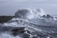 Grovt hav på kusten royaltyfri fotografi