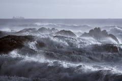 Grovt hav på kusten royaltyfria foton