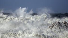 Grovt hav på kusten royaltyfri bild