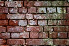 Grovt murverk Forntida vägg av tegelstenar Royaltyfri Foto