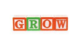 grow lizenzfreies stockfoto