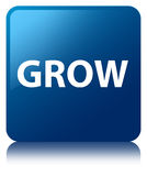 Grow blue square button Royalty Free Stock Images