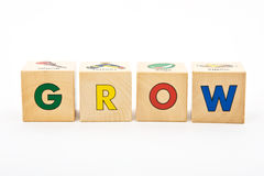 Grow Childrens Blocks Stock Photo