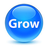 Grow glassy cyan blue round button Royalty Free Stock Images