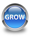 Grow glossy blue round button. Grow isolated on glossy blue round button abstract illustration Stock Photo