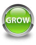Grow glossy green round button Stock Photo