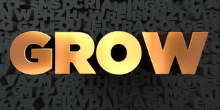 Grow - Gold text on black background - 3D rendered royalty free stock picture Stock Photography