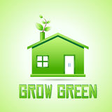 Grow green Royalty Free Stock Photo