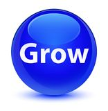 Grow glassy blue round button Royalty Free Stock Image