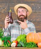Grow organic crops. Homegrown organic food. Man with beard wooden background. Organic horticulture concept. Farmer with. Organic vegetables. Gardening and royalty free stock photography