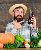 Grow organic crops. Homegrown organic food. Man with beard wooden background. Organic horticulture concept. Farmer with. Organic vegetables. Gardening and royalty free stock photo