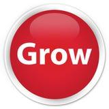 Grow premium red round button. Grow isolated on premium red round button abstract illustration Royalty Free Stock Photos