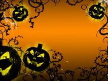 Grow pumpkin stock images