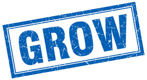 Grow square stamp Royalty Free Stock Image