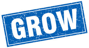 Grow square stamp Stock Images