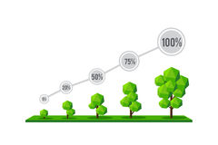 The grow of tree as a percentage, infographic of tree growing ve Royalty Free Stock Photography