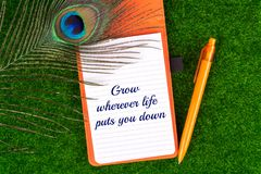 Grow wherever life puts you down. Text in notebook with peacock feather , pen and heart shape on grass Royalty Free Stock Photography