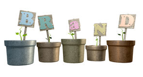 Grow Your Brand Flowerpot Royalty Free Stock Photo