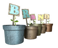 Grow Your Brand Flowerpot Stock Photography
