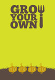 Grow Your Own poster_Onions. An illustration of a garden poster on a portrait format with the text Grow Your Own. A row of onions grow through brown earth at the Royalty Free Stock Photography