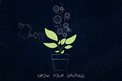 Watering a plant with coins growing out of it, grow your savings. Grow your savings conceptual illustration: watering a plant with coins growing out of it Royalty Free Stock Images