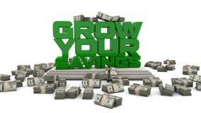 Grow Your Savings US Dollar
