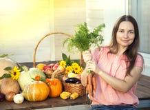 Grower rich harvest of vegetables, Nice woman gardener huge harv. Est for Thanksgiving Stock Images