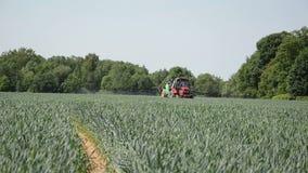 Growht crop stock footage