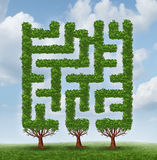 Growing Challenges. As a business concept of future complicated financial risks ahead with a group of trees shaped as a maze or labyrinth on a summer sky Royalty Free Stock Photos