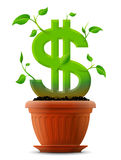 Growing dollar symbol like plant with leaves in fl Royalty Free Stock Photos