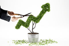 Growing the economy company . 3D Rendering. Businessman trims a plant that grows like an arrow . 3D Rendering Royalty Free Stock Photos