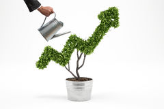 Growing the economy company . 3D Rendering. Businessman watering a plant that grows like an arrow . 3D Rendering Royalty Free Stock Photo