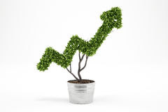 Growing the economy company . 3D Rendering. Plant that grows like an arrow . 3D Rendering. Growing the economy company concept stock images